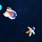 Star Navigator